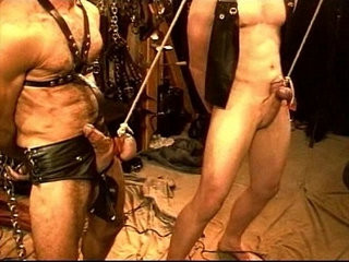 Five man sensual hard-on and Ball torment, BDSM orgy, pt